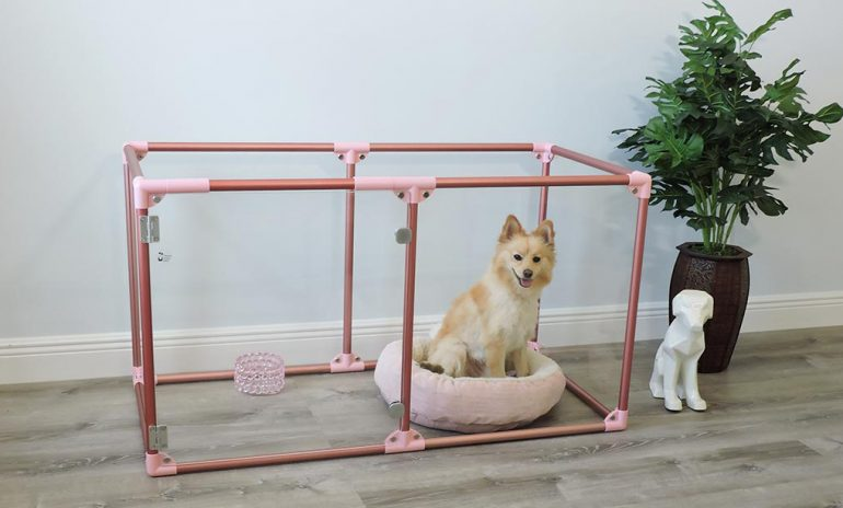 Modern Designed Dog Pen