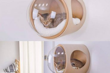 Best Wall Mounted Cat Bed That Actually Need Your Cat