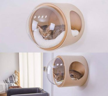 wall mounted cat bed