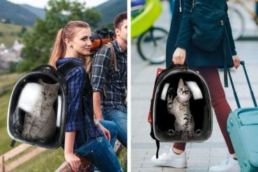This Bubble Pet Carrier Backpack Give Your Pet a Full View While You Travel