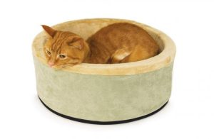heated bed for cat